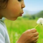 幼童的思考能力