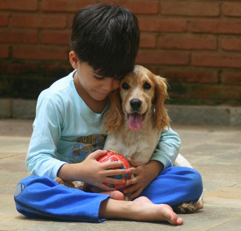 动物促进自闭孩子进行社会接触