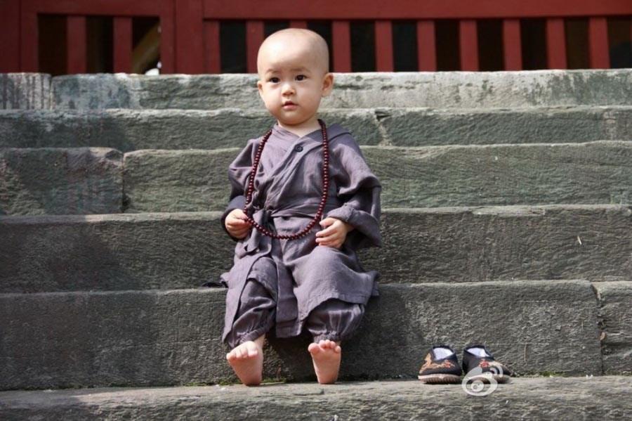 武当山小网友萌照曝光1和尚骂楼上的表情包赞中国小一休图片