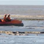 男孩被困淤泥动弹不得,救援人员开气垫船成功解救