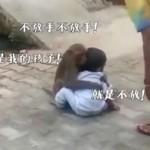 印度猴子绑架小男孩,死命抱住不肯松手