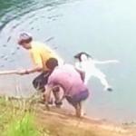 女孩落水后临危不乱,头枕书包救自己一命
