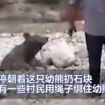 村民朝幼熊砸石头,致其惨死引众怒