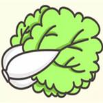 儿童简笔画之白菜