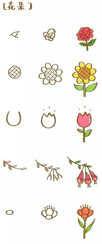 儿童简笔画之5种美丽的花朵