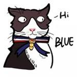 儿童简笔画之可爱小猫咪