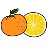 儿童简笔画之橙子