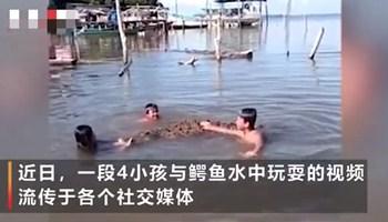 一群孩子与鳄鱼在河中玩耍,爸爸竟淡定拍摄