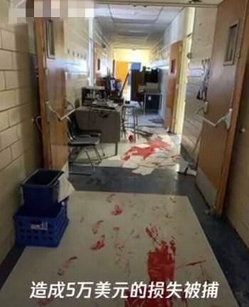 三熊娃闯进学校捣乱,疯狂搞破坏被警方逮捕
